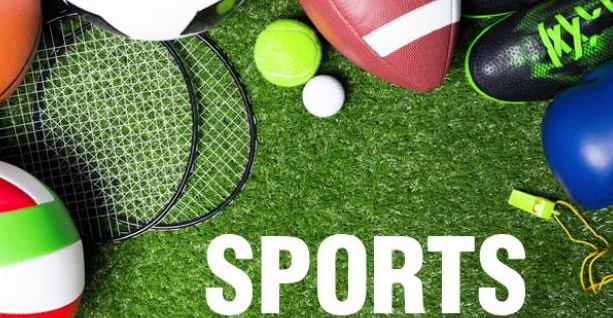 Ballsport-Equipment auf Rasen